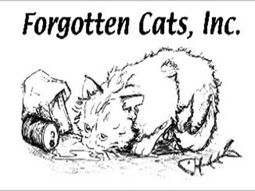 Forgotten Cats, Inc.